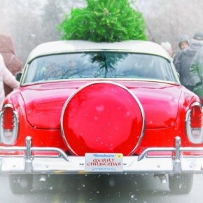 Happy Holidays & Merry ChristmasEveryone!!!