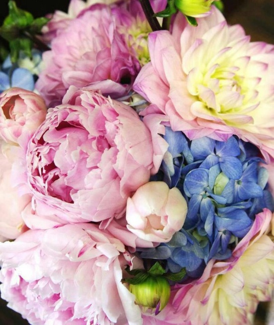 scent-inspiration
