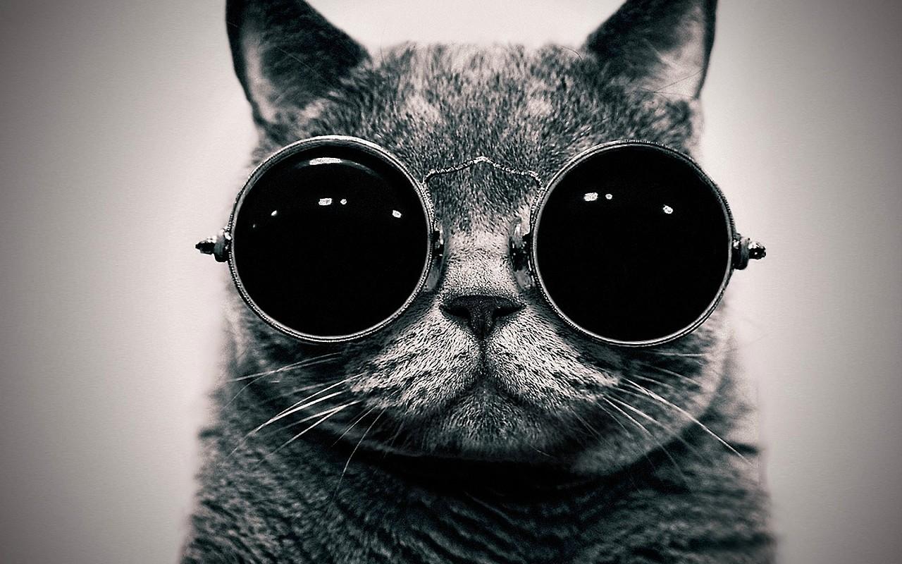 round-sunglasses-trend-style (2)
