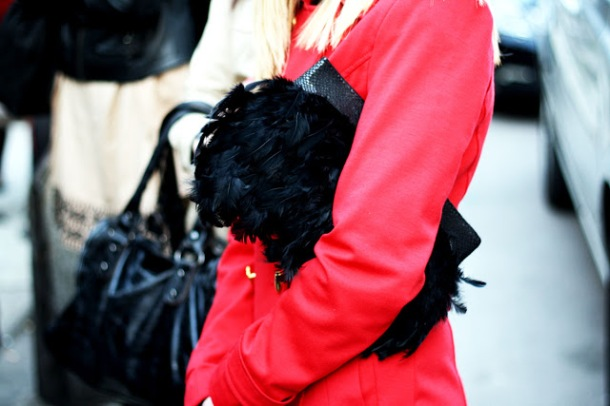 feathers-bag-autumn-trend-2014 (2)